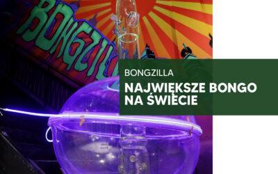 Bongzilla – największe bongo na świecie